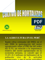 presenta-hortalizas-minag.pdf