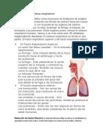 Funciones Del Sistema Respiratorio y Redaccion de Textos Literarios