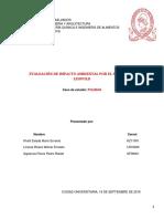 Evaluación de Impacto Ambiental - Método de Leopold