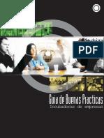 Guía de buenas prácticas - Incubadora empresarial.pdf
