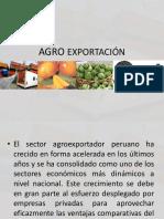 Agro Exportación n1