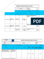 Formato Identificación de Peligros 2010 (1)