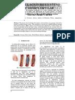 Stent Cardiovascular