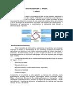 2da lectura BENCHMARKING EN LA MINERIA (1).docx