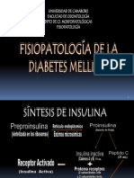 Diabetes Mellitusmatias