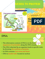 Chap 17 From Gene to Protein fix.ppt