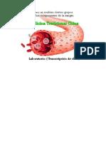 Se Evalúan Componentes de La Sangrebajo La Óptica de La Medicina ChinaElemento TierraEstudio Sobre La Hemoglobina Glicosilada
