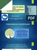 Presentación Hapic Duran