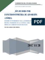 informe preliminar boro (1).docx