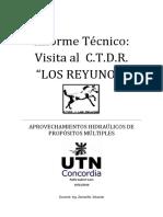 Informe Técnico Reyunos
