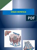 Staza Hepatica