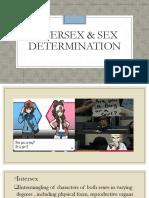Intersex & Sex Determination