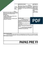 Plan de Negocios - Canvas Papas Pre Fritas