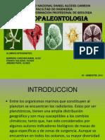 1-Exposicion Micropaleontologia Radiolarios