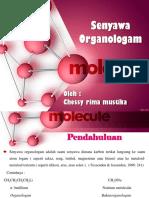 ppt_ organologam