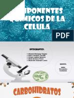 Componentes Quimicos de La Celula