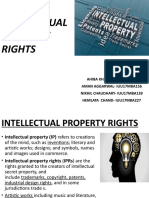 INTELLECTUAL_PROPERTY_RIGHTS.pptx