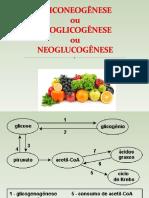 Aula 22- Neoglicogênese, Ciclo de Cori e de Alanina