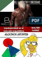 Lipotoxicidad Muscular (Walter Suárez, 2018)