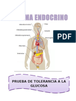 Endocrino Lab Fisiológico
