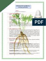 catalago-fitoterapia-5.docx