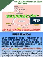 7 RESP 2017
