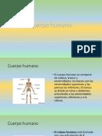 Cuerpo Humano Fernando