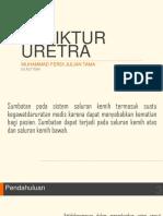 Ferdi New Urologi