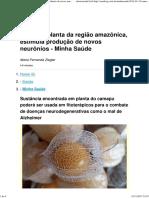 Camapu, Planta Da Região Amazônica, Estimula Produção de Novos Neurônios - Minha Saúde