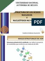 22 Nucleótidos No Nuceleicos