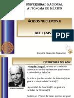 21 Ácidos Nucleicos II