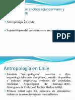 Antropologia Chile
