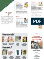 164517057-Triptico-El-Colera.docx
