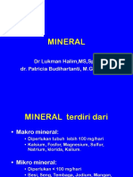 Mineral Modul Dt1