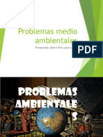 2. Problemas Medioambientales