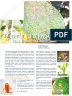 Revista Abril Arenagro