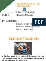 biodiversidaddiapositivas-130516193853-phpapp02
