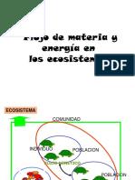 Cadena Alimenticia- Flujo de Materia y Energia
