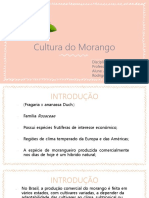 Cultura Do Morango