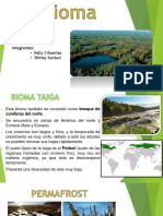 Bioma Taiga