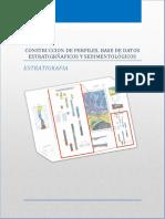 Construccion de Perfiles, Base de Datos Estratigraficos y Sedimentologicos