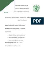 TRABAJO MONOGRÁFICO (1).docx