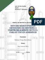 Perfil Proyecto Rocio