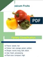 Pepper, tomato, Cucumber Presentation.pdf
