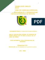 TESINA PENAL VIOLACION SEXUAL (2).doc