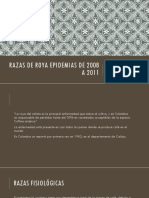 Razas de Roya Epidemias de 2008 a 2011