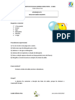 Atividade_1_BolasSabaoGigantes.pdf