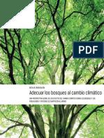 Policy_Brief_SPA_final.pdf