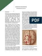 Arteriovenous Malformation Case Brata