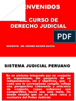 tribunal constituciodnal.pptx
